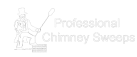 Professional Chimney Sweeps